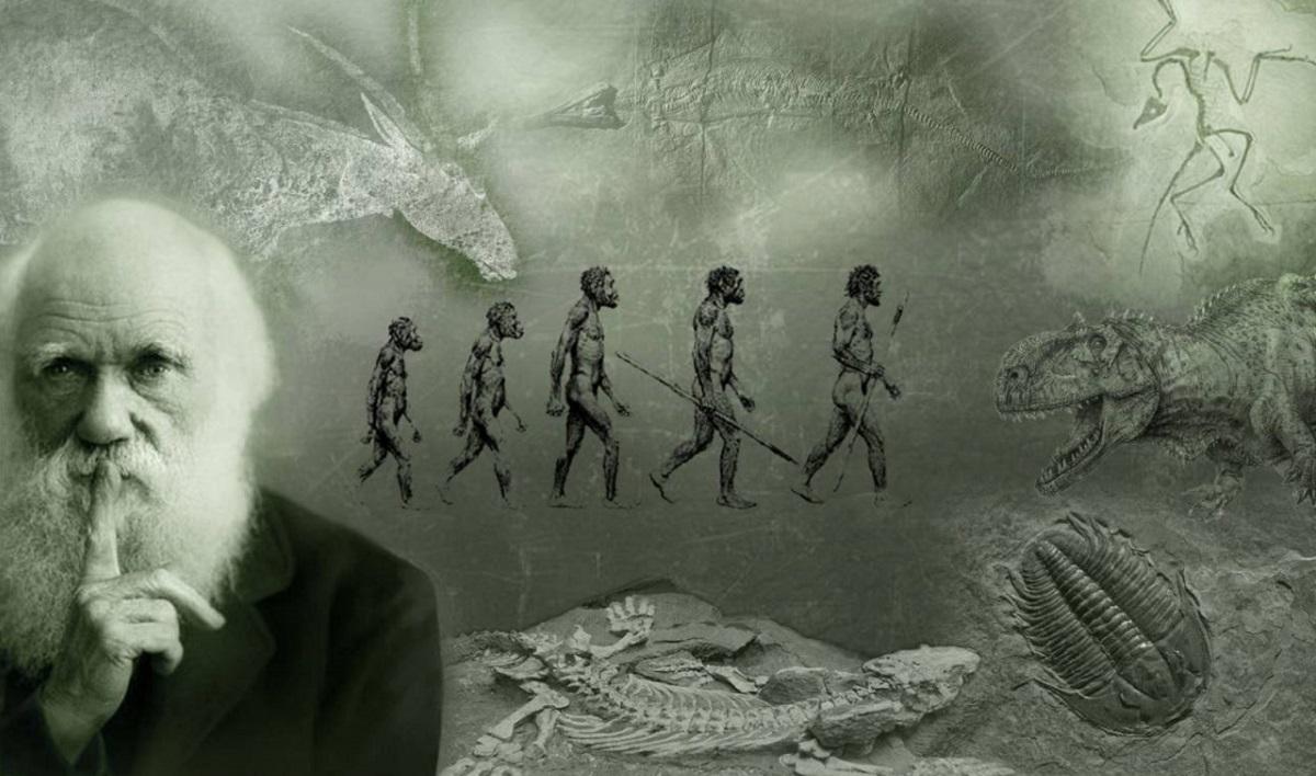 7 знаци дека не ја разбирате еволуцијата
