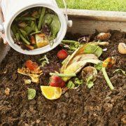 Како остатоците од храна да ги користите како ѓубриво?