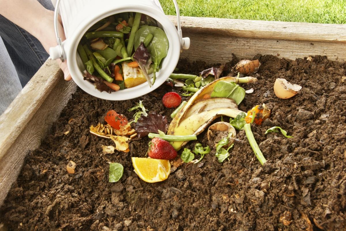 Како остатоците од храна да ги користите како ѓубриво